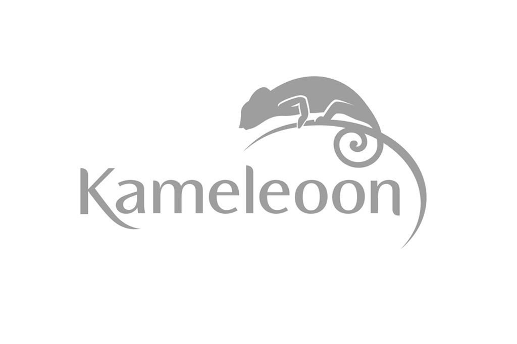 Lifting du logo Kameleoon - société de service informatique